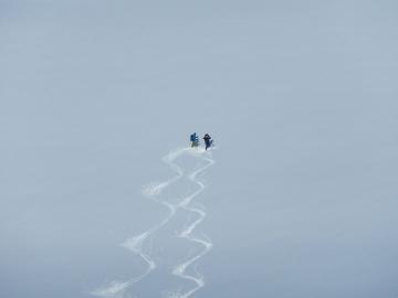 poudreuse groenlandaise © y estienne
