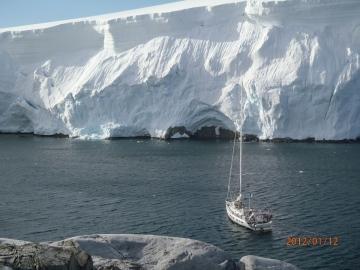 Melchior en péninsule antarctique